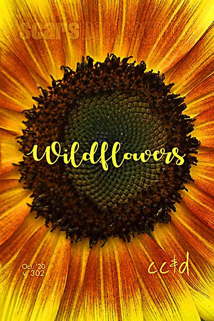 Wildflowers by Scars Publications